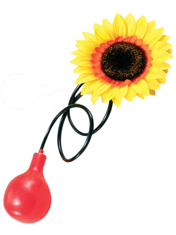 Water Squirt Sunflower