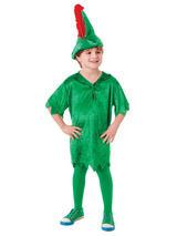 Child Peter Pan Deluxe Costume