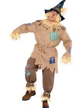 Mrscarecrow Costume