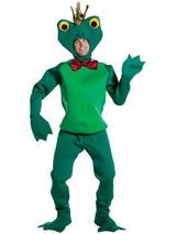 Adult's Frog Prince Costume