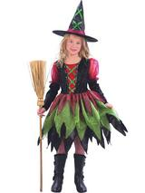 Child Girls Fairy Witch Tu Tu Costume