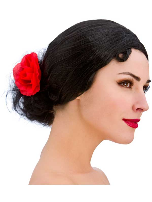 Adult Ladies Senorita Wig Black