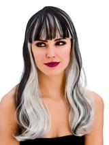 Adult Ladies Dark Fantasy Wig Black Silver