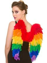 Adult Ladies Rainbow Feather Wings