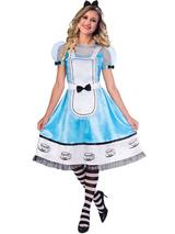 Ladies Alice Costume