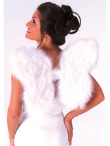 Soft White Feather Wings