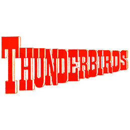 Thunderbirds Fancy Dress Costumes