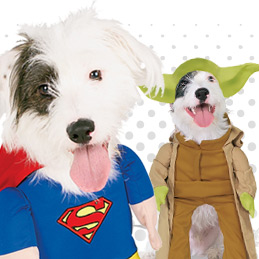 Pets Fancy Dress Costumes And Ideas
