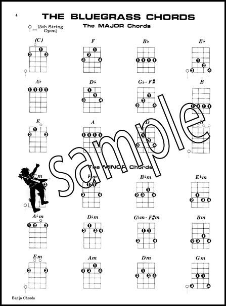 Mel Bays Banjo Chords 5 String Banjo Picture Chord Book Ebay