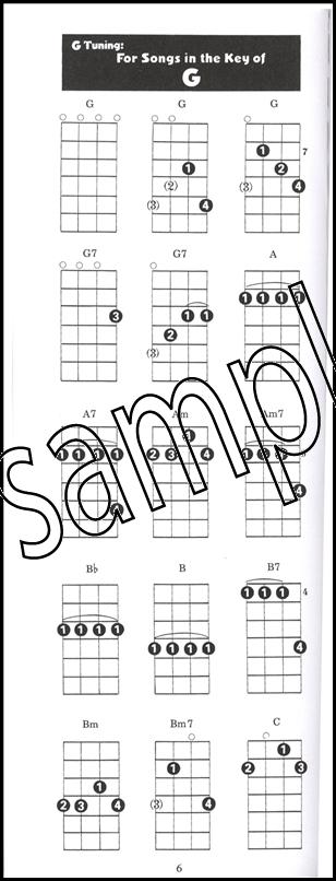 Banjo Case Chord Book Larry Sandberg 5 String Banjo Chord Book Ebay