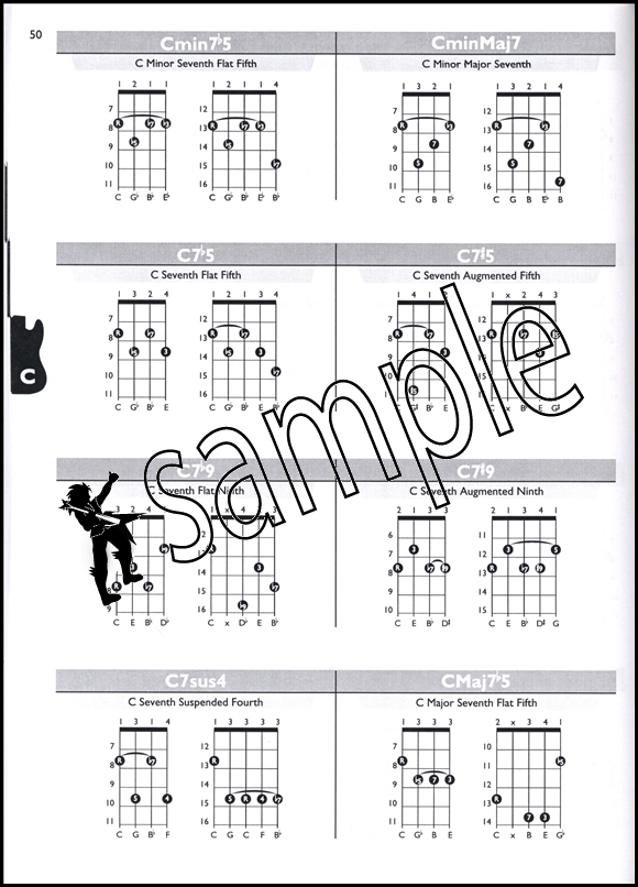 Sentinel Bass Chord Encyclopedia Guitar Book With CD For 4 String 5