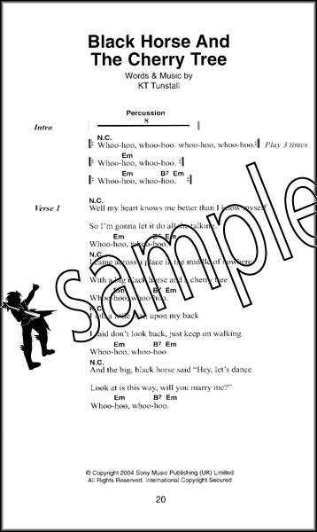 Pop Rock The Little Black Songbook Guitar Chords Lyrics Music