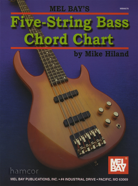 5-String Bass Guitar Chord Chart | eBay