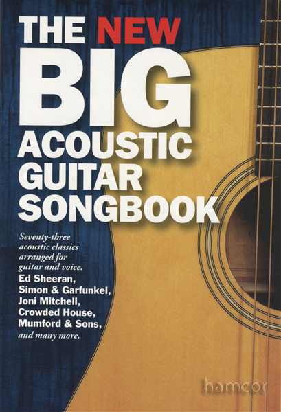 The New Big Acoustic Guitar Songbook Chord Songbook | eBay