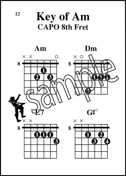 Guitar Capo Chords Made Easy Large Print Edition Hamcor
