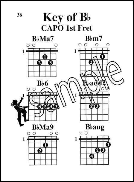 Guitar Capo Chords Made Easy Large Print Edition | Hamcor