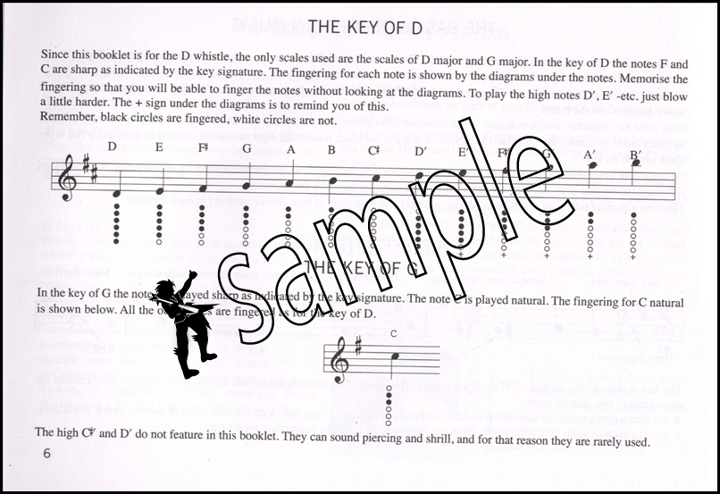 how to play a tin whistle for beginners