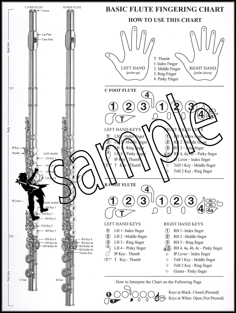 Basic Instrumental Fingering Chart For Flute Santorella  Hamcor