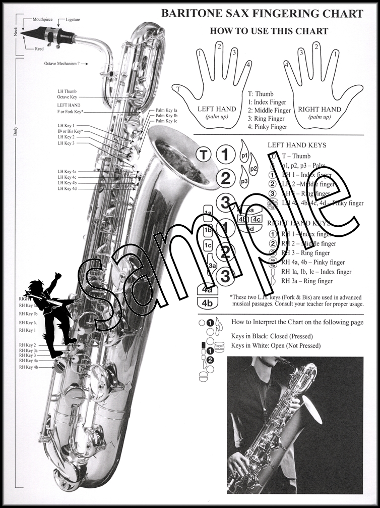 Often Called Avoid Confusion Horn Which Referred Simply One Larger Lower Pitched Members Family The Best Saxophone Charts