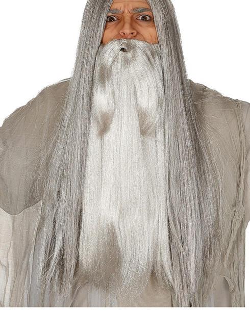 Men's Wizard Long Grey Beard
