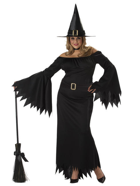 Ladies Elegant Witch Plus Size Costume