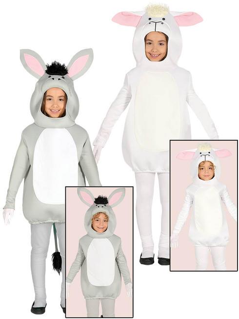 Child's Nativity Costume