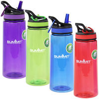 Summit 700ML Water Bottle with Straw