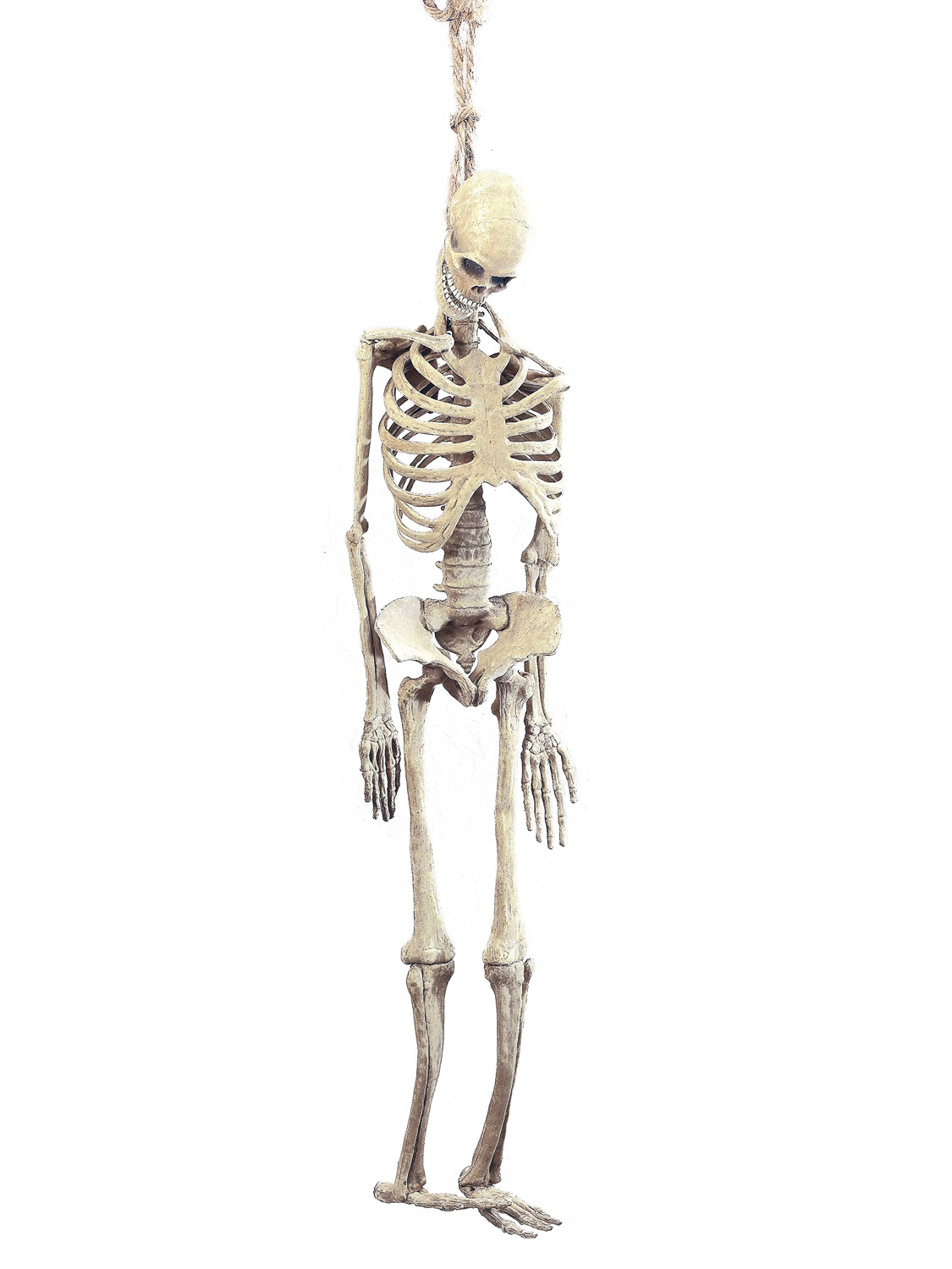 Life size Rubber Skeleton Halloween Hanging Decoration Poseable Prop ...