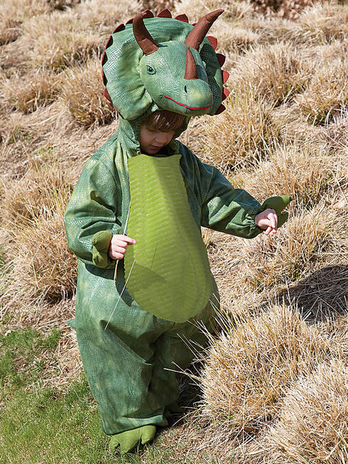 Boy's Deluxe Triceratops Costume