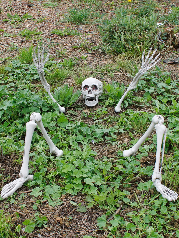 Details about Halloween Light Up Ground Breaker Skeleton Party Prop Decoration Graveyard Bones