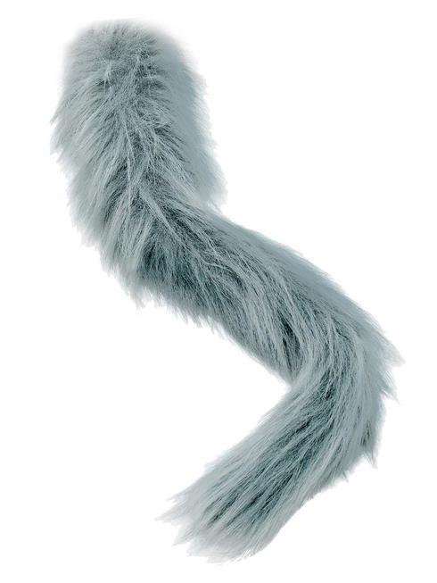 Animal Grey Tail