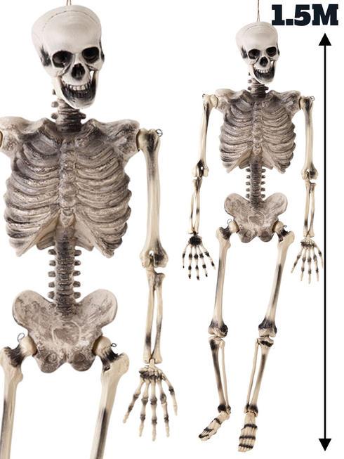 Blow Mould Skeleton 1.5M