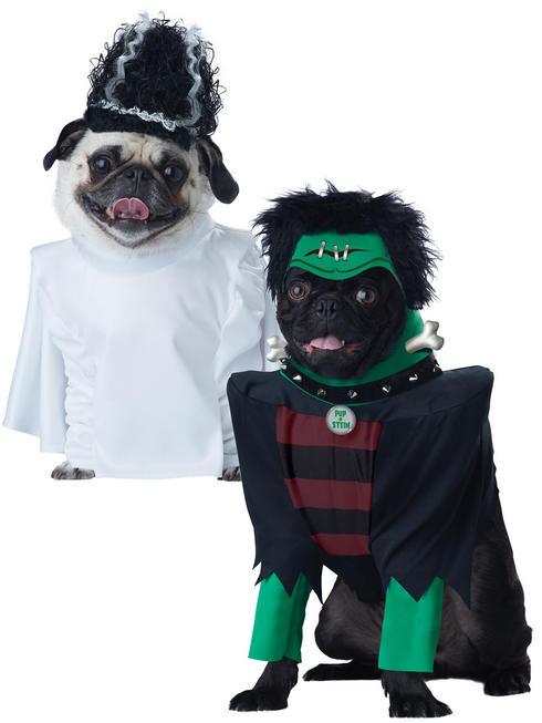 Pup-A-Razzi Frankenpup Dog Costume