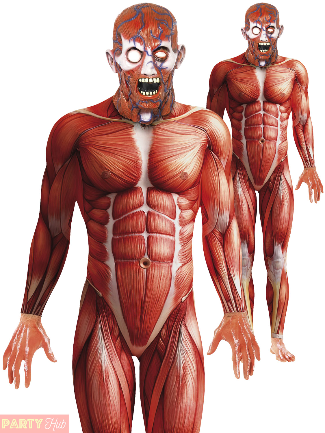 Adults Anatomy Man Costume Mens Muscle Halloween Fancy Dress Second