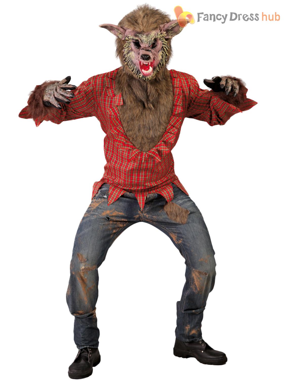 erwachsene werwolf kost m herren wolf halloween kost m horror teen party outfit ebay. Black Bedroom Furniture Sets. Home Design Ideas