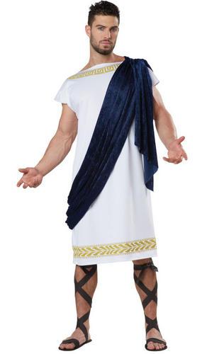 Grecian Toga Mens Fancy Dress Ancient Greece Roman History ... - photo #8