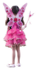 Sugar Plum Fairy Costume Set