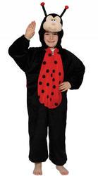 Kids Ladybug Fancy Dress