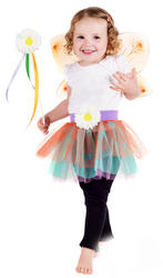 Fairy Costume Kit