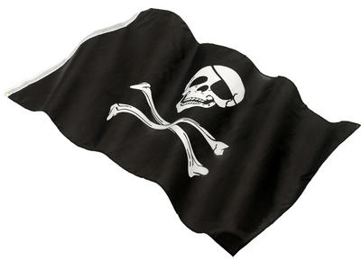 Pirate Flag Costume Accessory