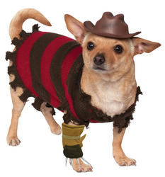 Freddy Kruger Dog Costume