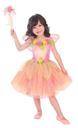 Peach Sorbet Fairy Girls Costume