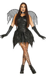 Dark Fairy Ladies Costume