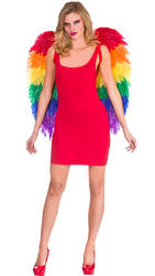 Large Rainbow Feather Wings