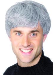 Grey Modern Haircut Wig Costume Accessory