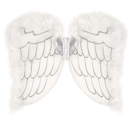 Kids Angel Wings Costume Accessory