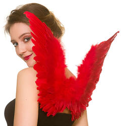 Small Red Feather Wings Costume Accessory
