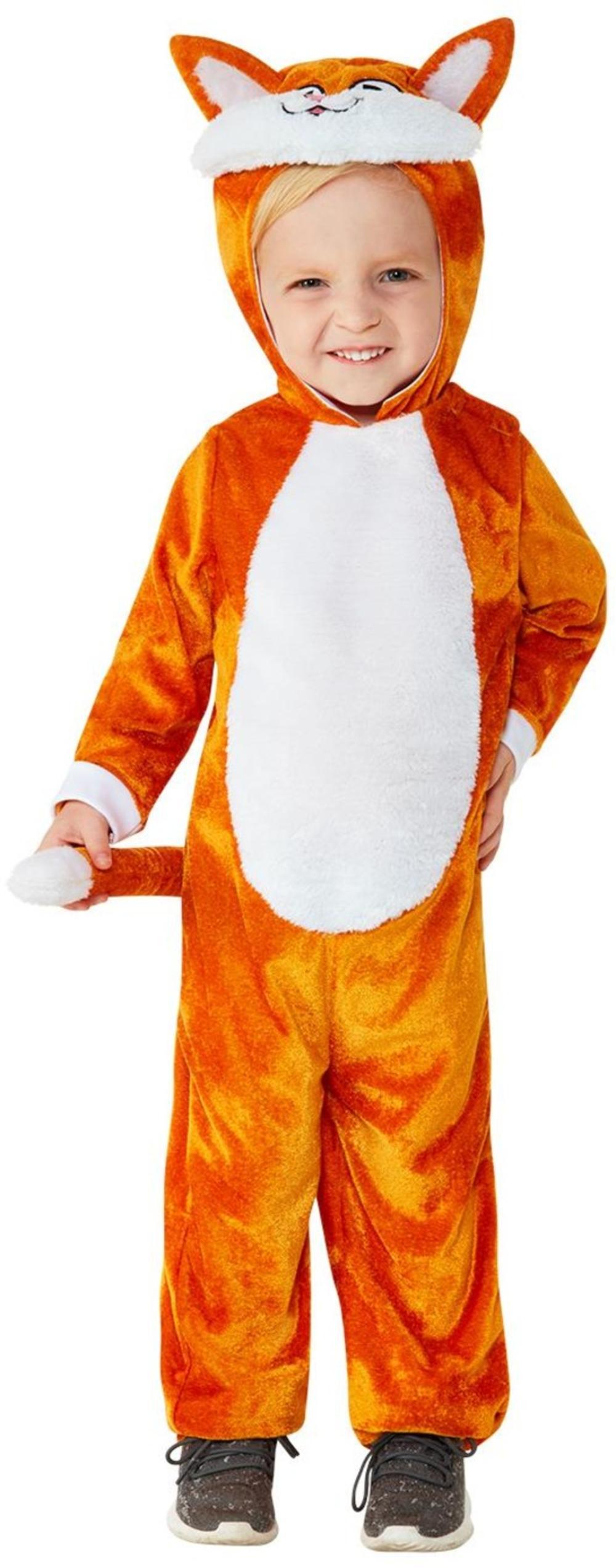Ginger Cat Kids Fancy Dress Pet Animal Boys Girls Toddler World Book Day Costume