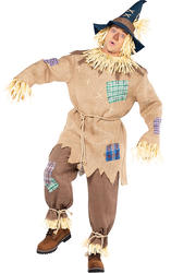 Scarecrow Mens Fancy Dress Halloween Fairytale World Book Day Adults Costume