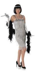 Silver Flapper Ladies Fancy Dress 20s 1920s Jazz Charleston Womens Adult Costume